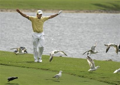 sg-capt4d5976235e1343bda1516e4f6794dc51ca_championship_golf_flls101.jpg